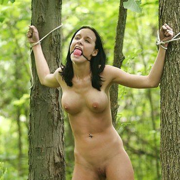 FesselSex im Wald
